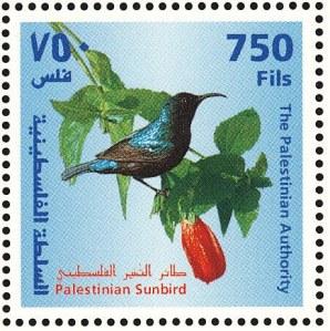 Palestine Sunbird Stamp